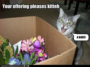 Your offering pleases kitteh