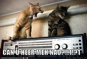 CAN U HEER MEH NAO?!!1!?1