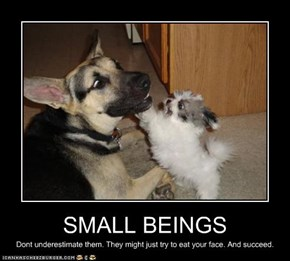 SMALL BEINGS