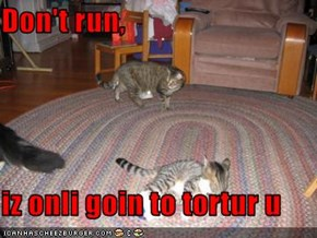 Don't run,  iz onli goin to tortur u