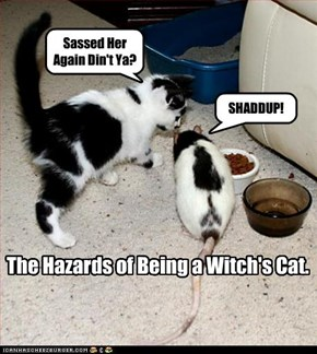 The Hazards of Being a Witch's Cat.
