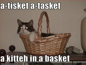 a-tisket a-tasket  a kitteh in a basket