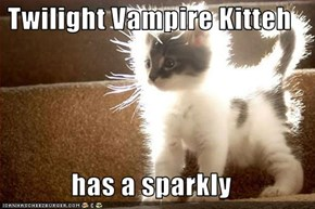 Twilight Vampire Kitteh  has a sparkly