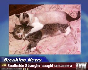 Breaking News - Southside Strangler caught on camera