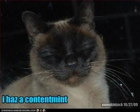 i haz a contentmint