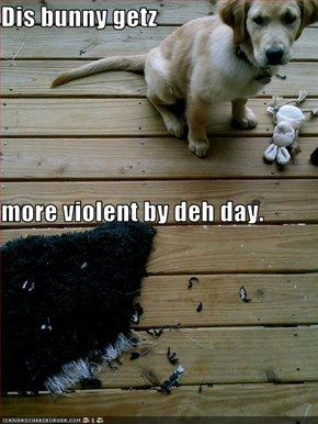 Dis bunny getz more violent by deh day.