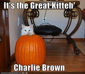 It's the Great Kitteh'          Charlie Brown