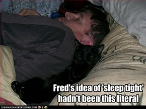 Fred's idea of 'sleep tight' hadn't been this literal