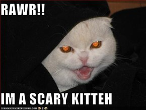 RAWR!!  IM A SCARY KITTEH