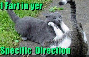 I Fart in yer  Specific  Direction