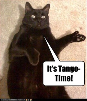 It's Tango-Time!