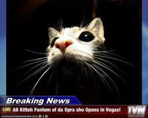 Breaking News - All Kitteh Fantom of da Opra sho Opens in Vegas!