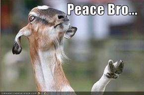 Peace Bro...