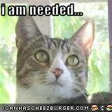 i am needed...