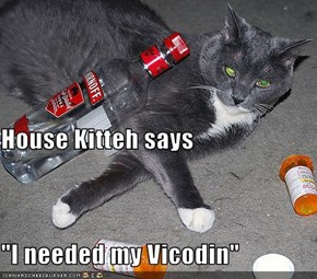 "House Kitteh says ""I needed my Vicodin"""