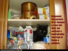Basement Cat aproovs of ur shooger & tranz fatz fuds, but notisses a unforgivable shortage of toona & gushies.