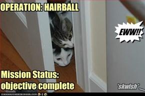 OPERATION: HAIRBALL