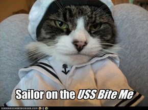 Sailor on the