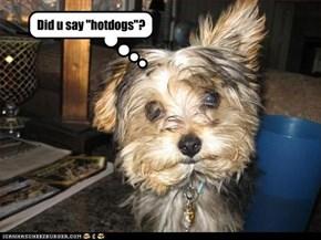 "Did u say ""hotdogs""?"