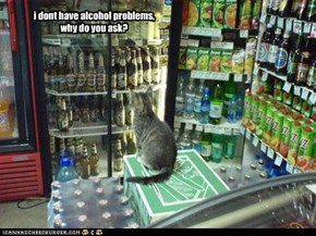 i dont have alcohol problems, why do you ask?