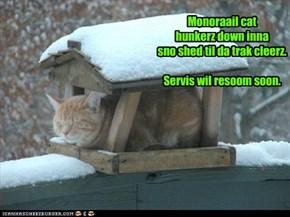 Monoraail cat  hunkerz down inna sno shed til da trak cleerz.  Servis wil resoom soon.