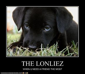 THE LONLIEZ