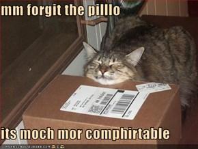 mm forgit the pilllo  its moch mor comphirtable