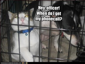 Hey, officer! When do I get my phonecall?