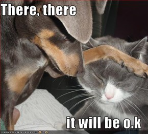 There, there   it will be o.k