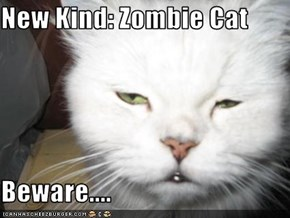 New Kind: Zombie Cat  Beware....