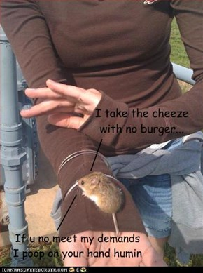 I take the cheeze with no burger...