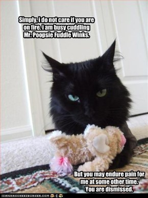 Simply, i do not care if you are on fire. i am busy cuddling  Mr. Poopsie Fuddle Winks.