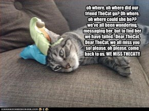 oh where, oh where did our friend TheCat go? Oh where, oh where could she be?? we've all been wondering, messaging her, but to find her we have failed.  Dear TheCat, Dear TheCat, we all miss you so! please, oh please, come back to us. WE MISS THECAT!!