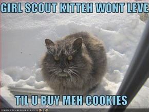 GIRL SCOUT KITTEH WONT LEVE  TIL U BUY MEH COOKIES