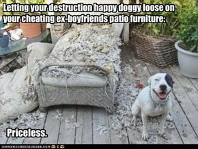 Letting your destruction happy doggy loose on your cheating ex-boyfriends patio furniture: