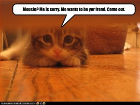 Mousie? Me is sorry. Me wants to be yor frend. Come out.