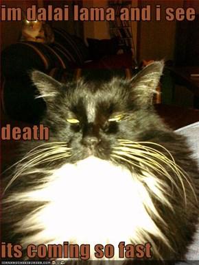 im dalai lama and i see death  its coming so fast
