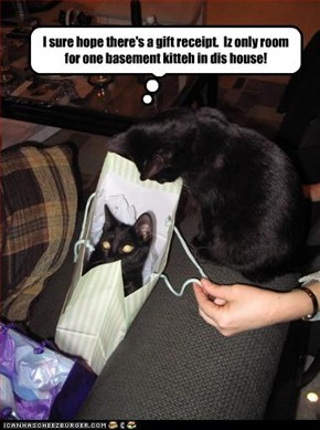 I sure hope there's a gift receipt.  Iz only room for one basement kitteh in dis house!
