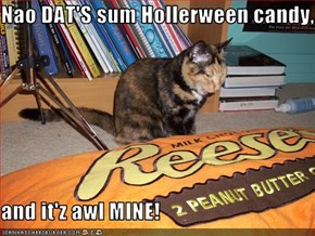 Nao DAT'S sum Hollerween candy,  and it'z awl MINE!