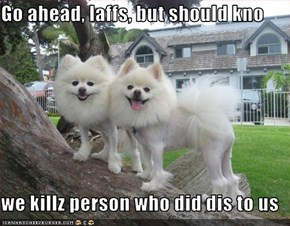Go ahead, laffs, but should kno  we killz person who did dis to us