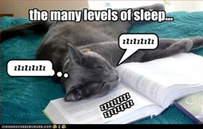 the many levels of sleep...