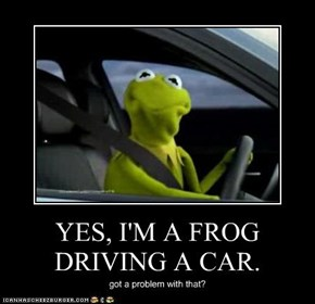 YES, I'M A FROG DRIVING A CAR.