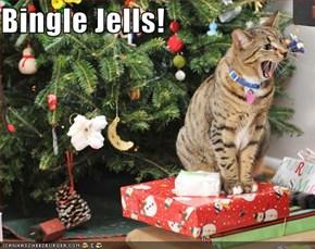 Bingle Jells!