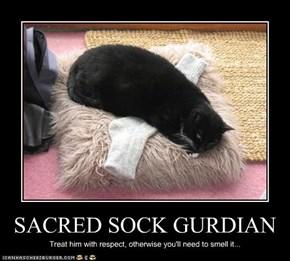 SACRED SOCK GURDIAN