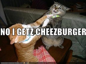 NO I GETZ CHEEZBURGER!!!