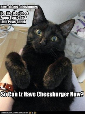 So Can Iz Have Cheesburger Now?