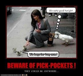 BEWARE OF PICK-POCKETS !