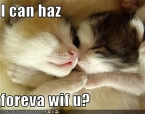 I can haz  foreva wif u?