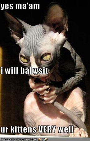 yes ma'am i will babysit ur kittens VERY well