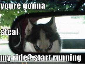 youre gonna  steal my ride? start running